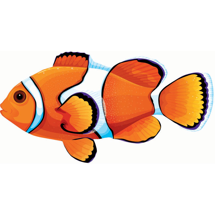 Clownfish clipart #3, Download drawings