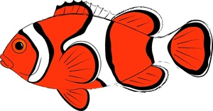 Clownfish clipart #16, Download drawings