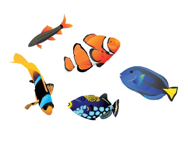 Clownfish svg #10, Download drawings