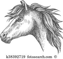 Clydesdale clipart #13, Download drawings