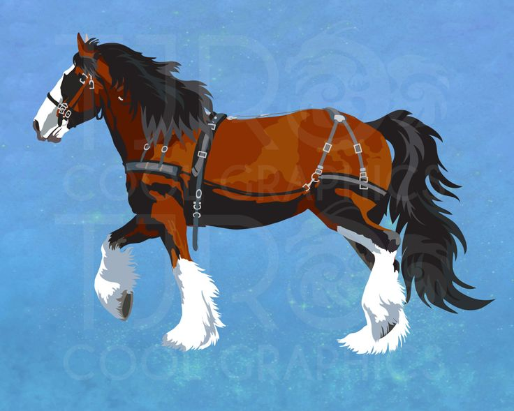 Clydesdale clipart #1, Download drawings