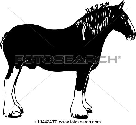 Clydesdale clipart #15, Download drawings