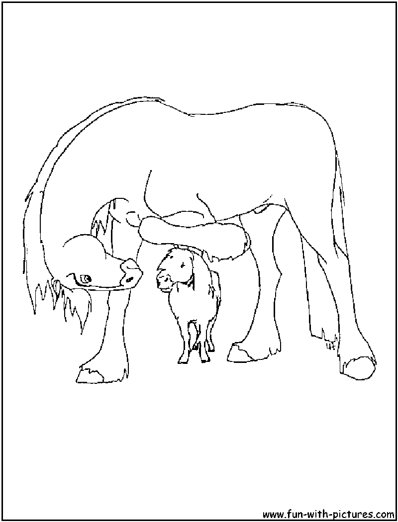 Clydesdale coloring #8, Download drawings