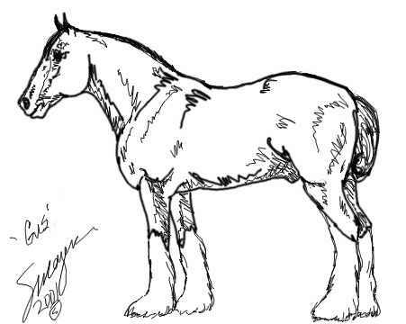 Clydesdale coloring #16, Download drawings