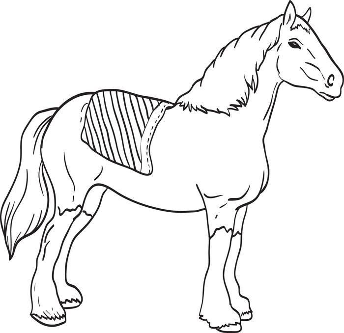 Clydesdale coloring #10, Download drawings