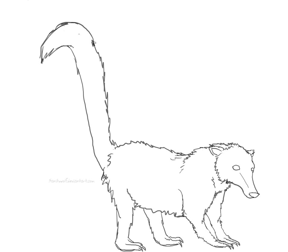 Coati coloring #11, Download drawings