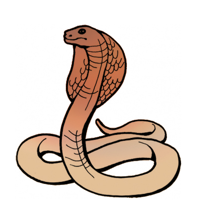 Cobra clipart #9, Download drawings