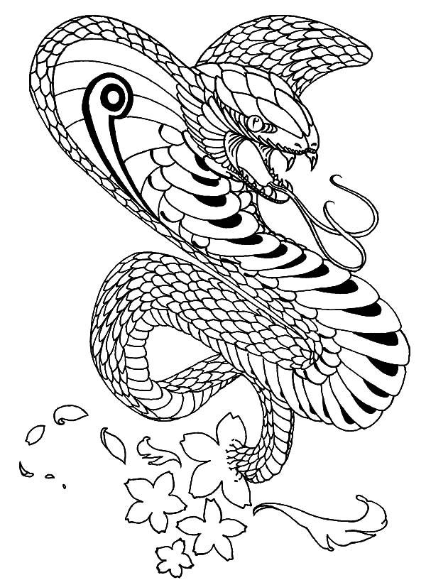 Cobra coloring #12, Download drawings