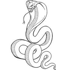 Cobra coloring #14, Download drawings