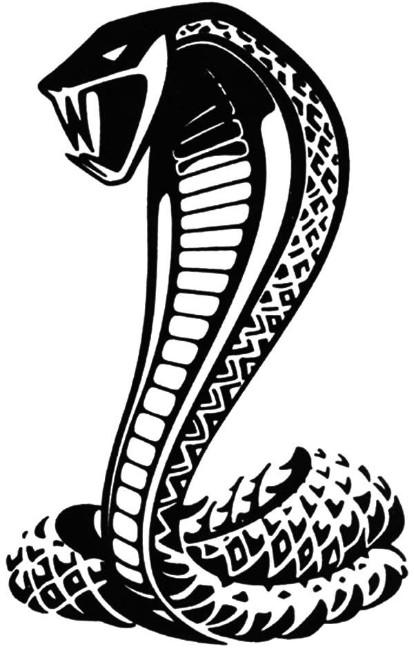 Cobra coloring #1, Download drawings