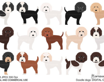 Cockapoo clipart #16, Download drawings