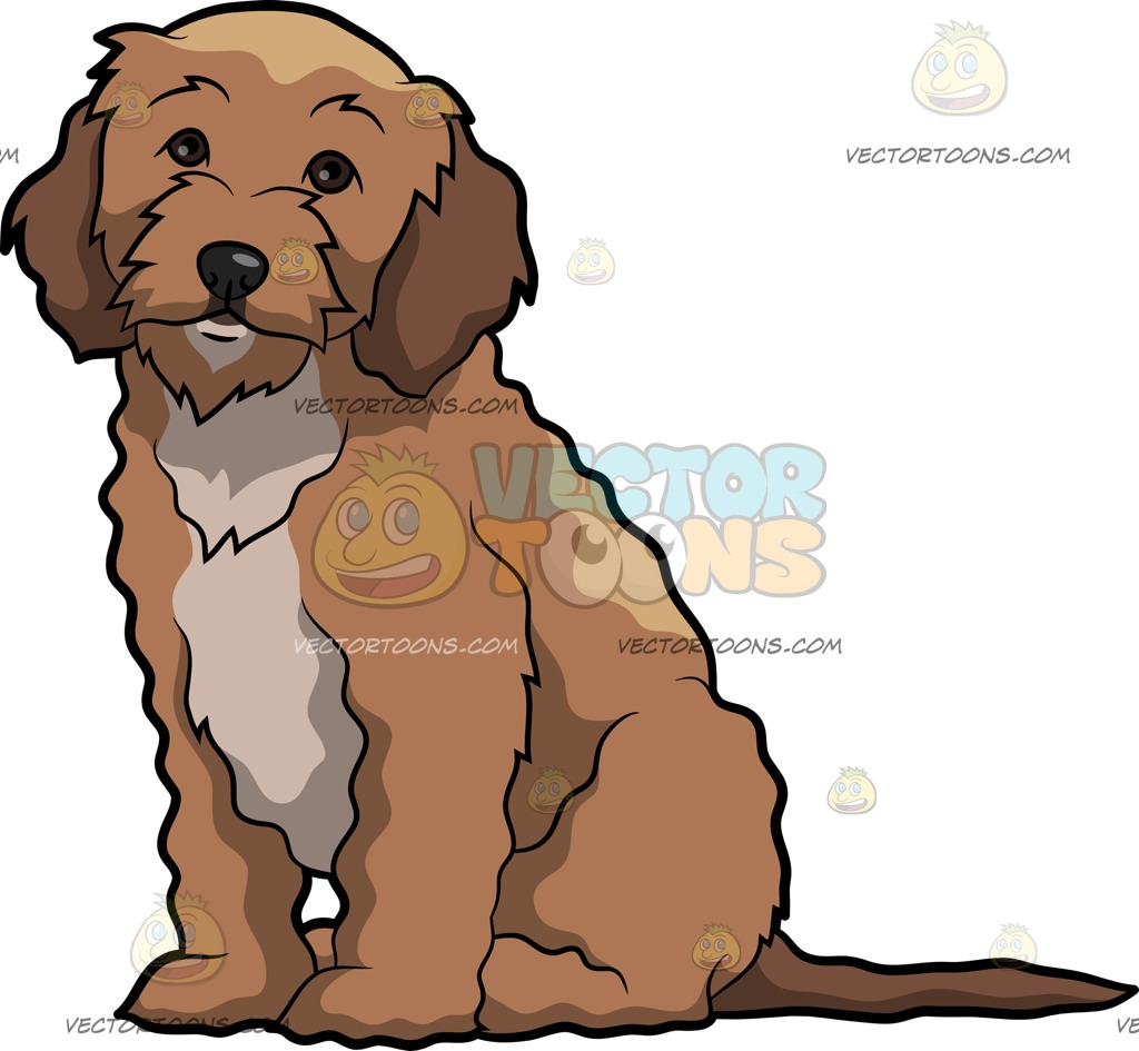Cockapoo clipart #12, Download drawings