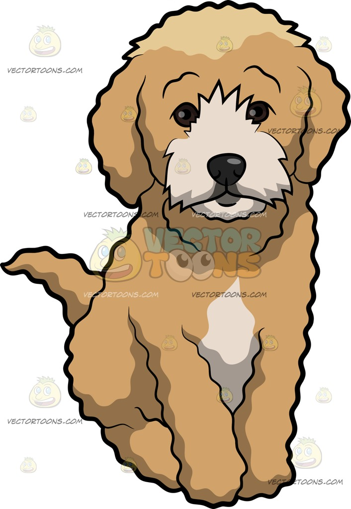 Cockapoo clipart #5, Download drawings