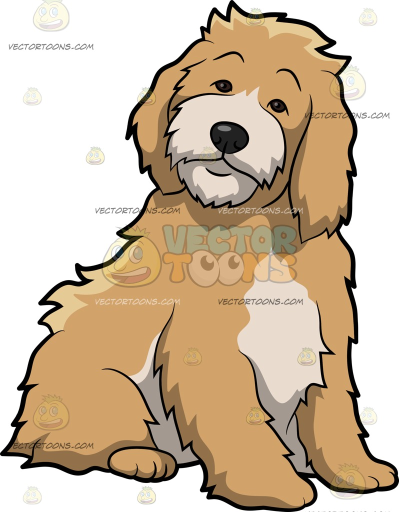 Cockapoo clipart #2, Download drawings