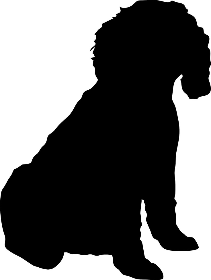 Cockapoo clipart #1, Download drawings