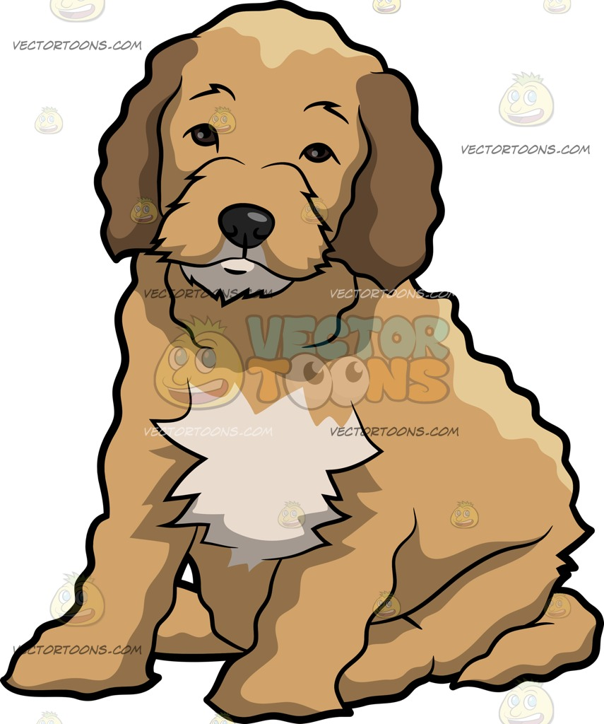 Cockapoo clipart #17, Download drawings