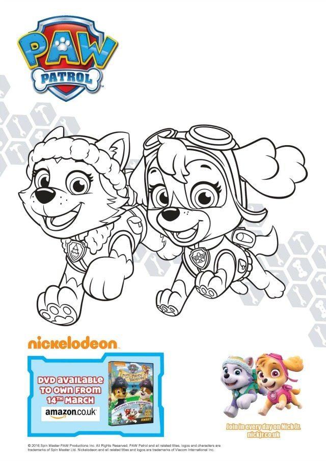 Cockapoo coloring #1, Download drawings