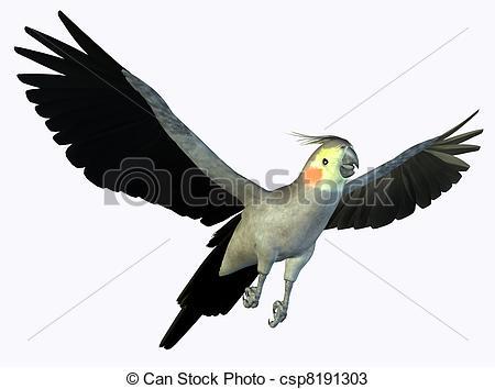 Cockatiel clipart #3, Download drawings