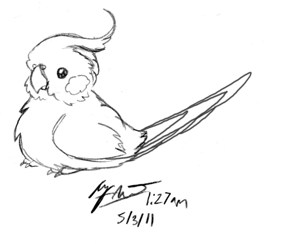 Cockatiel coloring #2, Download drawings