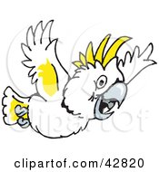 Cockatoo clipart #7, Download drawings