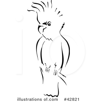 Cockatoo clipart #9, Download drawings