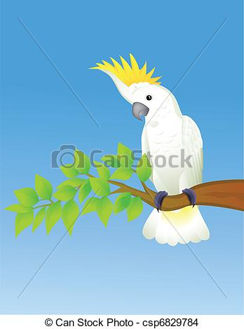 Sulphur-crested Cockatoo clipart #11, Download drawings