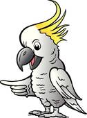 White Cockatoo clipart #18, Download drawings