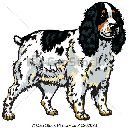 Spaniel clipart #5, Download drawings