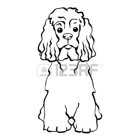 Spaniel clipart #1, Download drawings