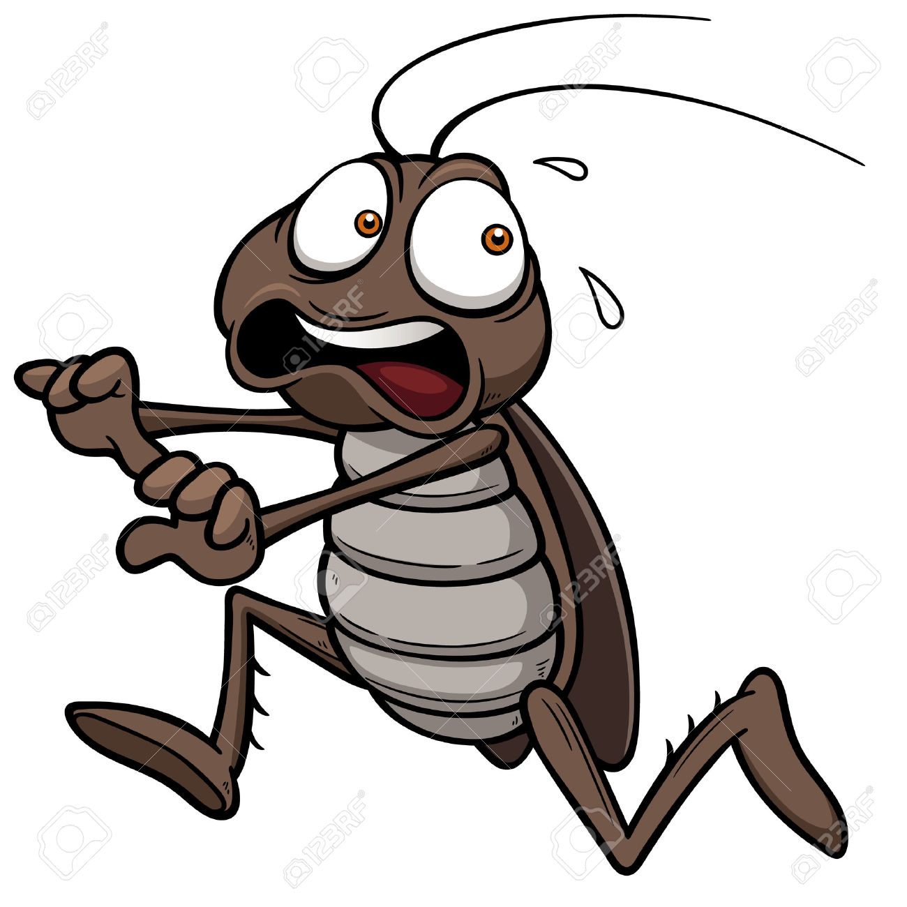 Cockroach clipart #10, Download drawings