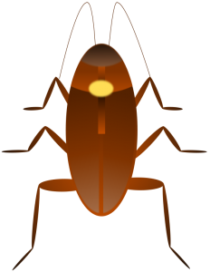 Cockroach clipart #4, Download drawings