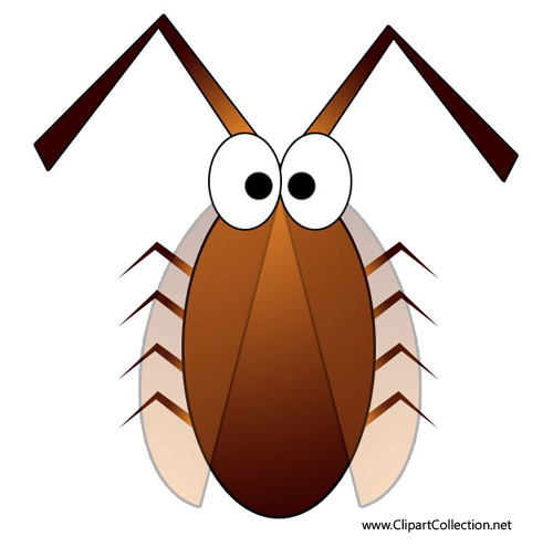 Cockroach clipart #7, Download drawings