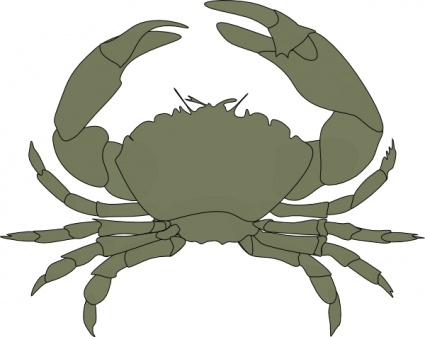 Coconut Crab clipart #15, Download drawings