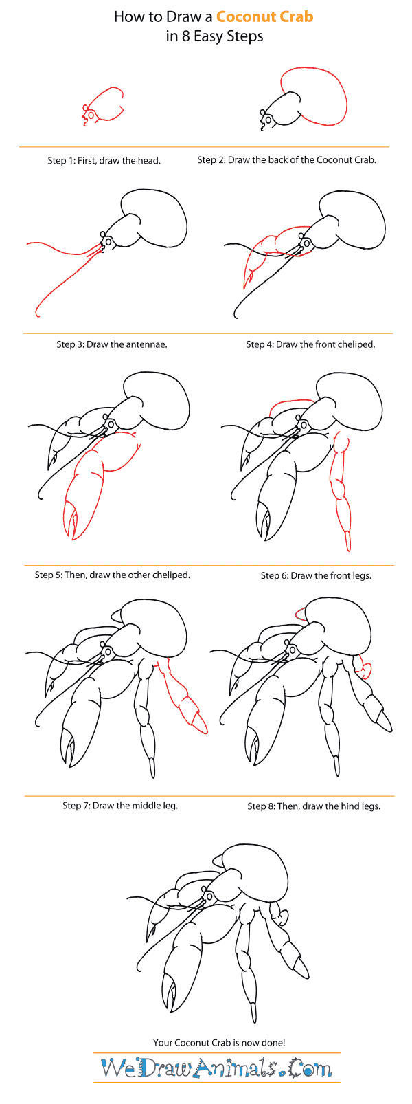 Coconut Crab coloring #14, Download drawings