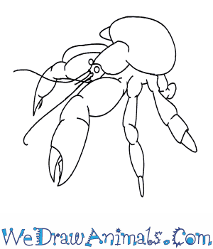 Coconut Crab coloring #20, Download drawings