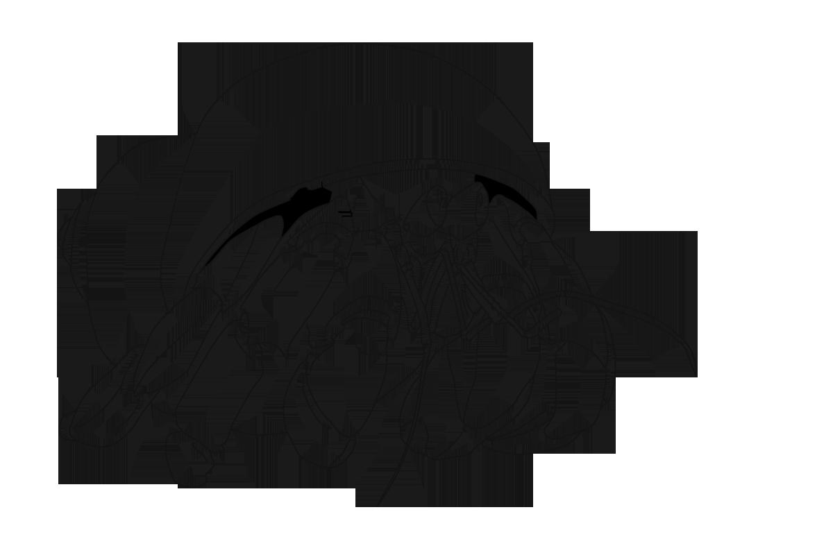 Coconut Crab coloring #12, Download drawings