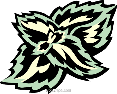 Coleus clipart #13, Download drawings