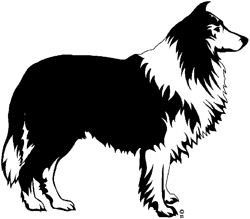 Collie clipart #20, Download drawings