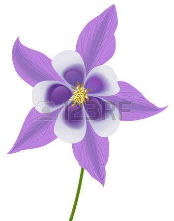 Colorado Blue Columbine clipart #18, Download drawings