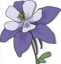 Colorado Blue Columbine clipart #17, Download drawings