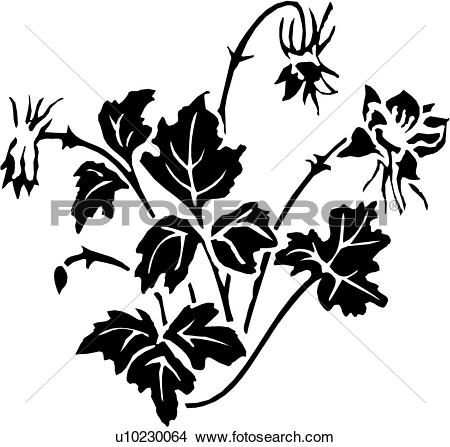 Columbine clipart #2, Download drawings