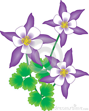 Columbine clipart #10, Download drawings