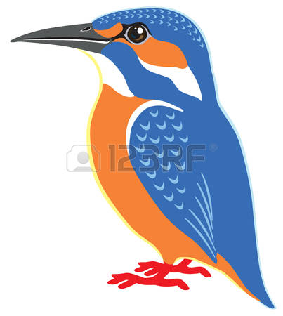 Common Kingfisher clipart #1, Download drawings