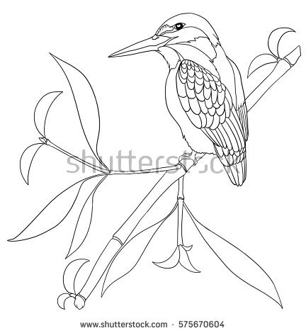 Common Kingfisher coloring #7, Download drawings