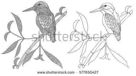 Common Kingfisher coloring #2, Download drawings