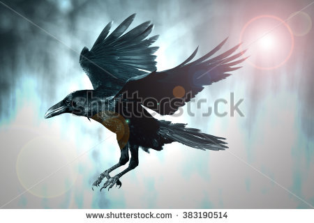 Common Raven clipart #15, Download drawings