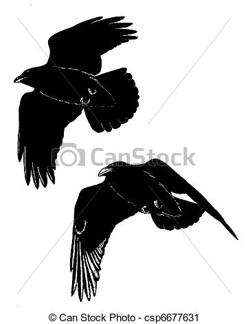 Common Raven clipart #11, Download drawings