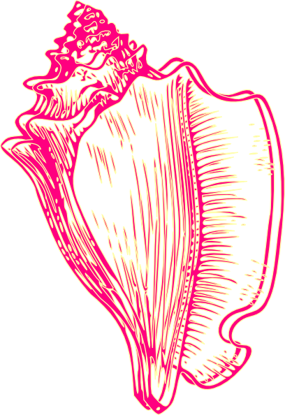 Conch clipart #9, Download drawings