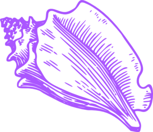 Conch clipart #3, Download drawings