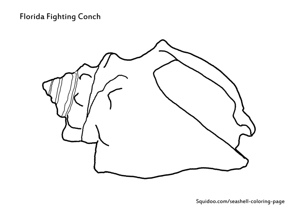 Conch coloring #7, Download drawings